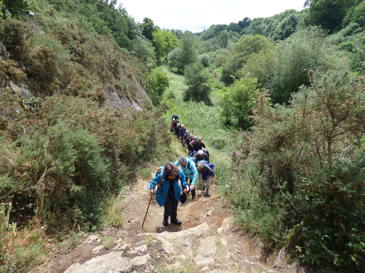 Association Emeraude Rando, randonnée pédestre à Saint-Malo - OSEN